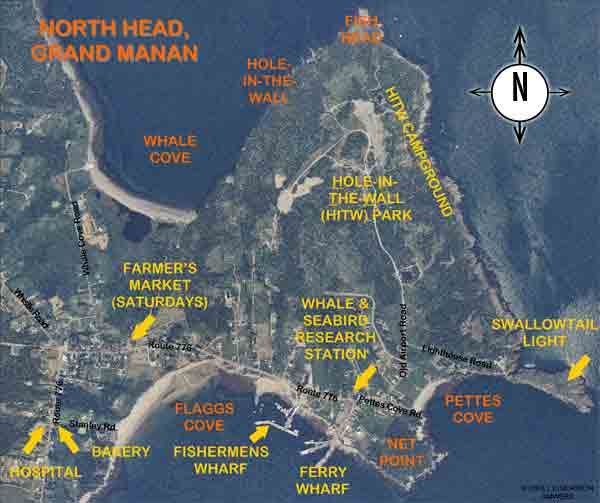Aerial of the North Head, Grand Manan