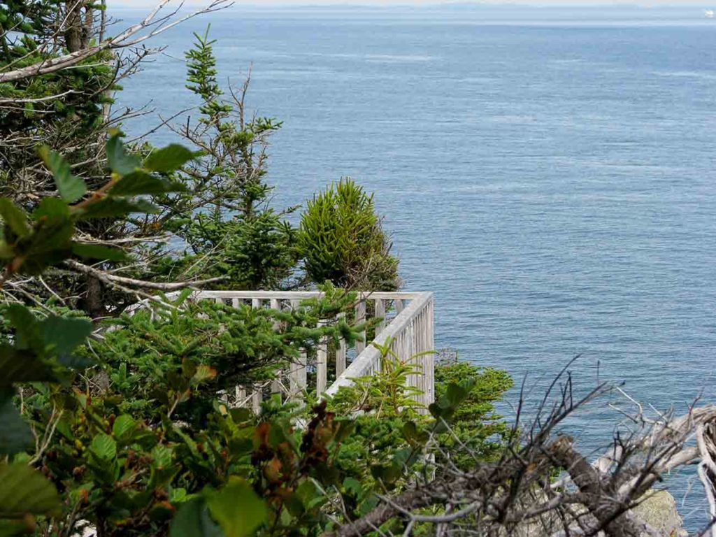 view from the Grand Manan hiking trail at Hole in the Wall Campground