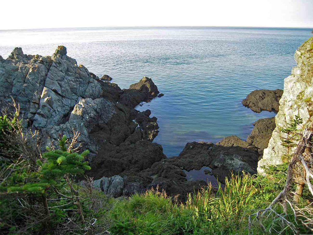 Hiking trail on Grand Manan Island at Hole in the Wall Campground