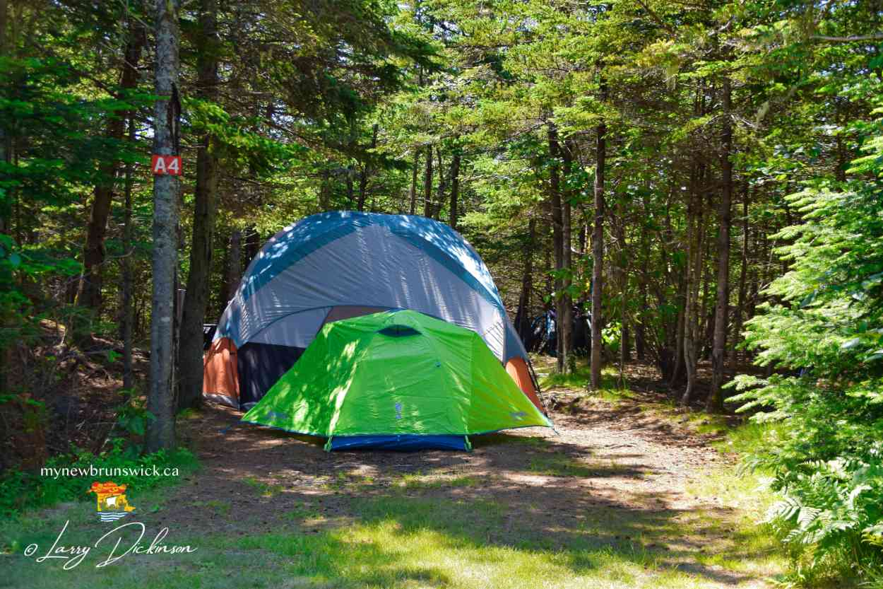 Tenting at North Head Campground and Park