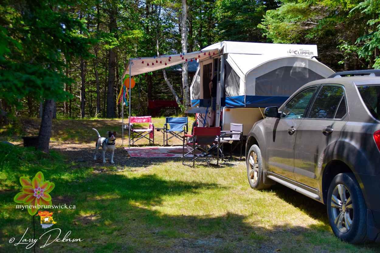 Tenting at North Head Campground & Park | photo © MyNewBrunswick.ca